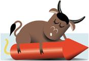 Bull sitting on top of rocket