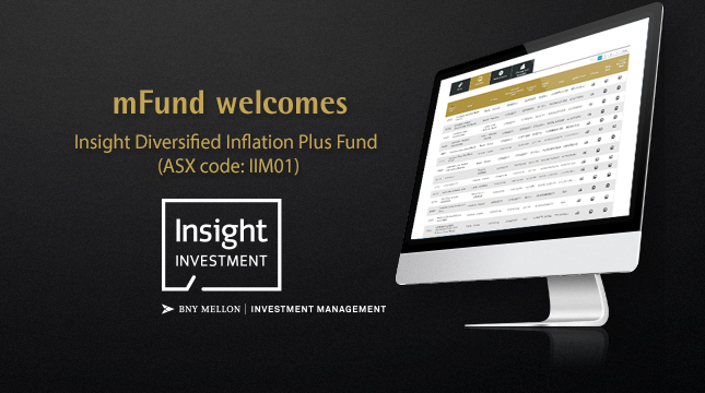 2003-mfund-insight-iim01